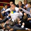 Нет ни коалиции, ни парламента - есть свора жулья по интересам