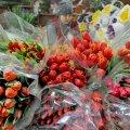 Накануне 8 марта в Житомире организуют временные площадки для торговли цветами