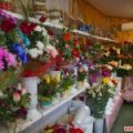 Влада хоче, щоб на проводи житомиряни замість штучних квітів купували більше живих
