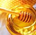 На кожного жителя Житомирщини припадає по 6,3 кілограми меду