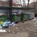 Картина маслом: в центре Житомира горы мусора. ФОТО