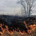 У Житомирській області за минулу добу 5 разів гасили загоряння сухої трави