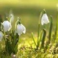 Погода в Житомире и Житомирской области на среду, 8 марта