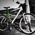 У Коростені чоловік відібрав у знайомого велосипед