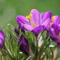 Погода в Житомире и Житомирской области на вторник, 14 марта