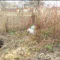 В Олевську під кущами малини знайшли мертве немовля