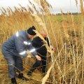 В Пулинському районі втопився 36-річний чоловік