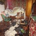 На Житомирщині онук намагався замаскувати убивство своєї бабусі