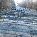 У Романівському районі водій через густий туман не помітив дерево на дорозі і пошкодив автівку