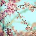 Погода в Житомире и Житомирской области на вторник, 4 апреля