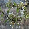 Погода в Житомирі на середу, 4 квітня