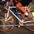 Житомирські спортсмени привезли три нагороди із Весняного чемпіонату з велоспорту