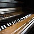 У Житомирській філармонії з мелодіями відомих композиторів виступить фортепіанне тріо