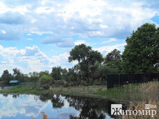 У Буках господар-мажор захопив берег річки Тетерів і закрив шлагбаумом та високим парканом прохід до ...