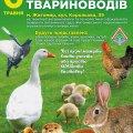 У Житомирі відбудеться виставка домашніх птахів та тварин
