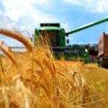 На що спрямують 4,7 млн грн з програми агропромислового розвитку Житомирської області