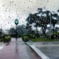 Погода в Житомирі на п'ятницю,  2 червня