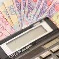 У Житомирській області з початку року майже на 50% зросли надходження від єдиного податку