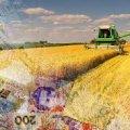 Житомирська область за три місяці отримала майже 16 млн грн дотації для підтримки сільгоспвиробників