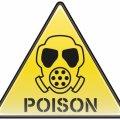 У популярних стравах виявили небезпечні для здоров'я канцерогени
