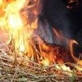 Через дитячі пустощі в Олевському районі вогонь знищив 4,5 тонни сіна