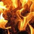 Вогонь знищив 5 тонн заготовленого сіна в Андрушівці