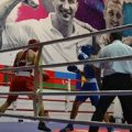 У Бердичеві турнір на призи братів Кличків збере боксерів із 10 країн