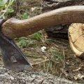 У Коростені затримали 22-річного підпільного лісоруба