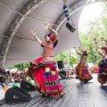 В Житомирі відсвяткують День індійської культури та мистецтва