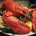 Деякі морепродукти визнано смертельно небезпечними для жінок