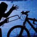 Поліція за тиждень розшукала чоловіка, який вкрав велосипед у селянки з Бердичівського району