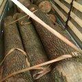 Патрульні зупинили на посту Кочерів вантажівку з деревиною невідомого походження