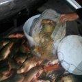 У Бердичеві поліцейські затримали браконьєра з сітками і рибою