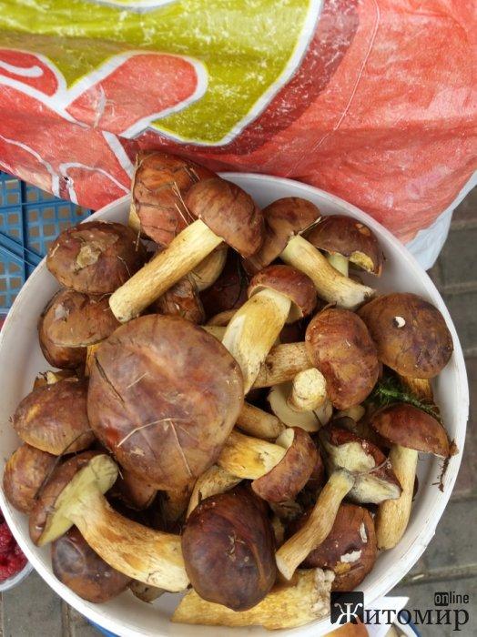 На Житньому ринку у Житомирі білі гриби за півмісяця подешевшали вдвічі