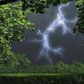 Через нічну грозу у Житомирській області без світла залишилися 14 населених пунктів, – ДСНС