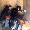 На Житомирщині поліцейські затримали серійного викрадача мопедів