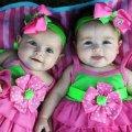 З початку року в Житомирській області народилося 79 пар двійнят, 13 вересня – в сім'ї бердичівлян