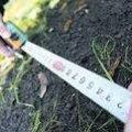 Дитячий садочок у Романівському районі працює без документів на земельну ділянку, на якій розташований