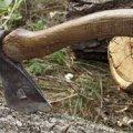 У Новоград-Волинському районі затримали злісного лісоруба, якого оштрафували четвертий раз