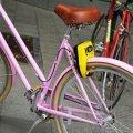 У Житомирі може з'явитися близько 1000 велосипедів, які здаватимуть в оренду