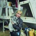 Із Житомира витіснили продукцію однієї з найбільших кролеферм України