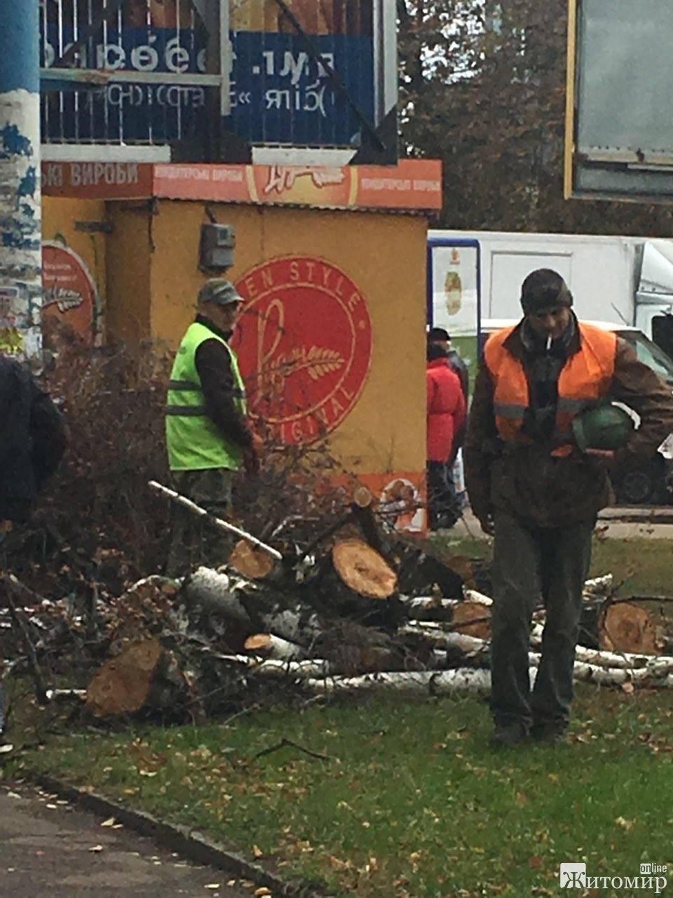 В сквері на Лятошинського вирізають дерева