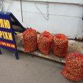 На Житньому ринку в Житомирі зараз процвітає горіховий бізнес