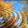 Погода в Житомире и Житомирской области на вторник, 3 октября
