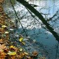 Погода в Житомире и Житомирской области на пятницу, 6 октября