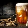 Вчені пояснили, чому деяким людям так важко відмовитися від пива
