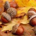 Погода в Житомире и Житомирской области на среду, 18 октября