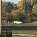 Цікаво, що стереже поліцейська автівка  на полі по вулиці Польовій в Житомирі