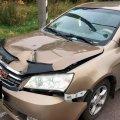 У Рівненській області житомирянка на Geely збила школярку, яка вибігла з-за маршрутки