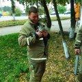 У Коростені рятувальники знімали з дерева кота